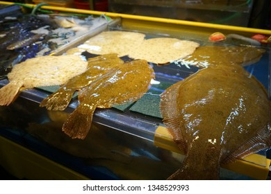flatfish from the fishery market