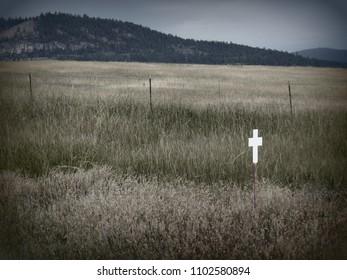 Imágenes, fotos de stock y vectores sobre Flathead Reservation