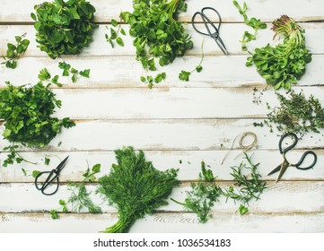 Flat-lay of bunches of various fresh green kitchen herbs. Parsley, mint, dill, cilantro, rosemary, thyme over white wooden background, top view, copy space. Healthy vegan cooking concept