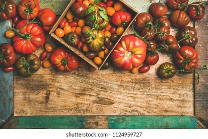 Flat-lay of fresh colorful ripe Fall or Summer heirloom, bunch and cherry tomatoes veriety over rustic tray background, top view, copy space. Local market seasonal produce