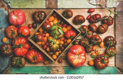 Flat-lay of fresh colorful ripe Fall or Summer heirloom, bunch and cherry tomatoes veriety on tray over painted rustic wooden background, top view. Local market seasonal produce