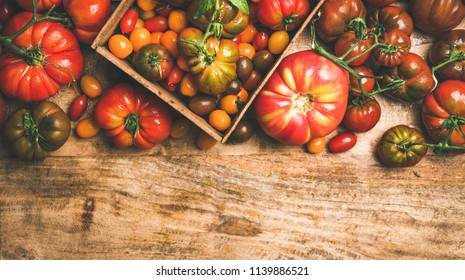 Flat-lay of fresh colorful ripe Fall or Summer heirloom, bunch and cherry tomatoes veriety over rustic wooden background, top view, copy space. Local market seasonal produce