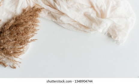 Flatlay of pampas grass on white surface.