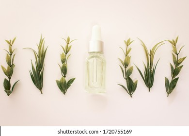 Flatley .essential oil. Aromatic oil. essential oil with a flower and fresh medicinal herbs on a white background