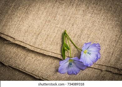 flax - linen flower on a linen textile