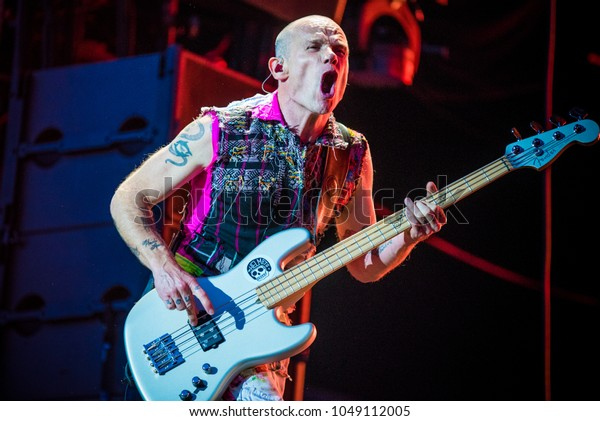Flea from Red Hot Chili Peppers performs in concert at Rock im Park festival on June 5, 2016 in Nuremberg, Germany