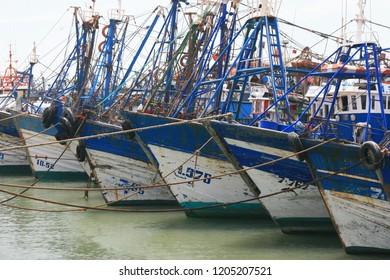 Fleet of fishing boats, Essaouira harbour, Morocco, North Africa