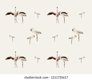 Flemingos pattern Illustration africa for tshirt, bedsheet