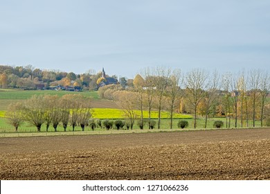 Flemish ardennes landscape, with farm fields, pollarded willow trees and a small church of he village of Onkerzele on the hilltop. Flanders, Belgium