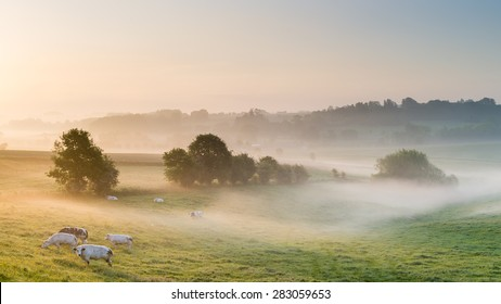 The Flemish Ardennes on an early morning in May