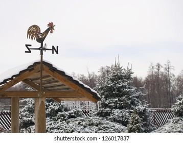 flger-cockerel on a roof of the private house against a winter landscape