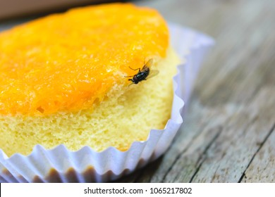 The flies are on a yellow cake.