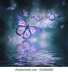 Flight of butterflies is in the rays of light