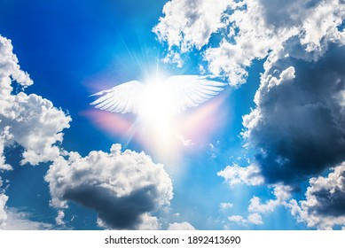 Flight of soul  , Angel in Heaven of Paradise