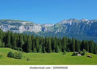 The Flimserstein mountains in Flims Laax, Graubunden, Switzerland, Europe