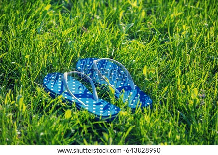 ae5999eab Flip flop sandals on grass summertime stock photo edit now jpg 450x320  Meadow grass sandals