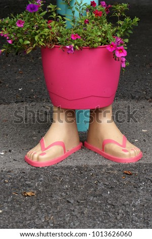 Flip Flops Planter Stock Photo Edit Now 1013626060 Shutterstock