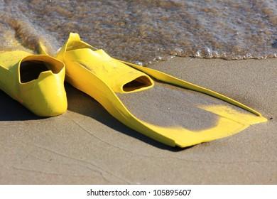 Flippers on sandy beach