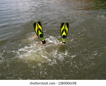 Flippers stick out of the water up. Healthy rest under water. Diving into flippers.