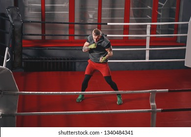 Float like butterfly, sting like bee. Muscular tattooed boxer in sports clothing punching on red boxing ring while exercising in the gym