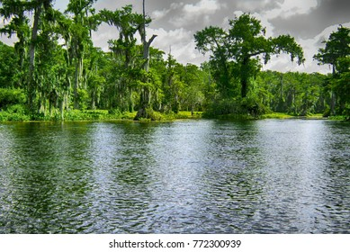 Floating Down the River in a Florida State Park