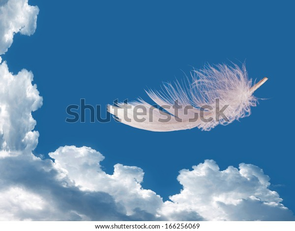 Floating feather over sky