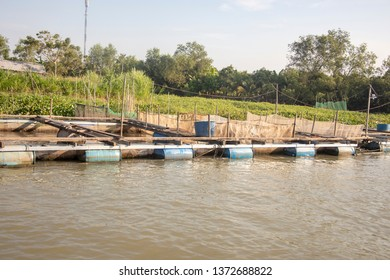 Floating fish pens along waterfront of Mekong River Delta in Vietnam.