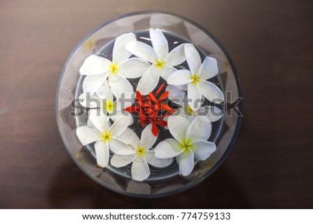 Floating Flower Bowls Stock Photo Edit Now 774759133 Shutterstock