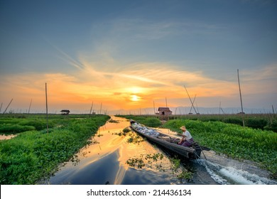 Floating garden in Inle Lake, Myanmar, Burma