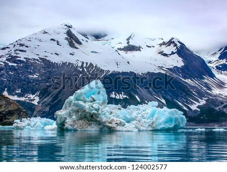Floating iceberg in Glacier Bay National Park, Alaska