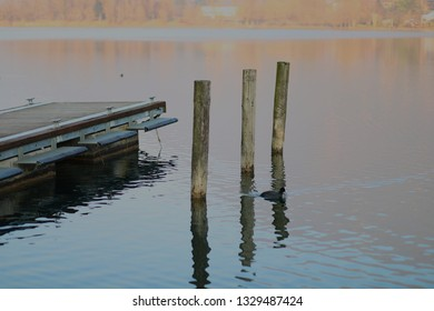 Floating pier in a calm lake at sunset
