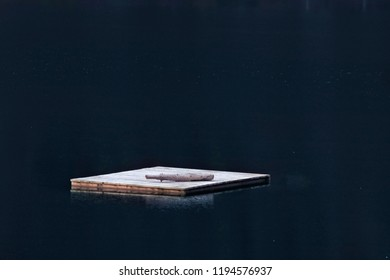 Floating wooden platform on a lake