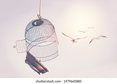 A flock of birds broke the cage and flew into the sky. The desire to change life concept