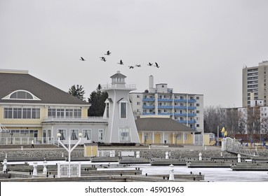 flock of birds flying above the lighthouse, harbour landscape in Oakville Ontario, Canada