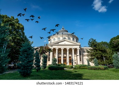 A flock of birds lifts the flight in front of the Athenaeum building in Bucharest, Romania.