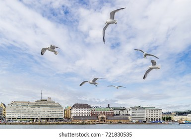 A flock of seagulls flies in the sky with the architecture of central Helsinki, Finland in the background