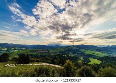 Flock of sheep at sunset. Sheeps in a meadow in the alpine pastures in the Slovakia mountains. Beautiful natural landscape.