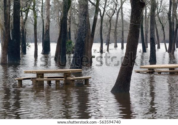 Flooded after heavy rain  Bear Creek Pioneers Park, Houston, Texas