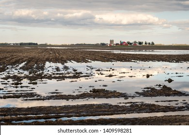 Flooded agricultural corn fields with sky reflected in the water soaked field.