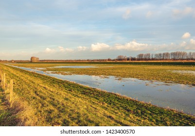 Flooded area in Dutch National Park Biesbosch near the village of Werkendam. The photo was taken just before sunset at the end of a sunny day in the winter season.