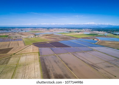 Flooded fields for rice cultivation in the Po Valley, Italy. Panoramic aerial view.