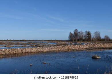 Flooded great grassland by spring season at the swedish island Oland