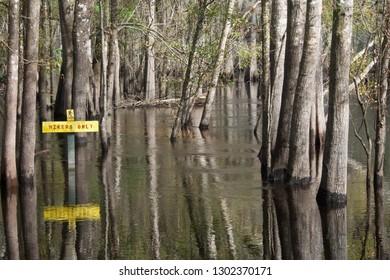 A Flooded Hiking Trail