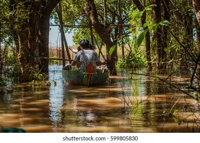 Flooded mangrove forest surrounds the area of Kompong Phluk, a cluster of three villages of stilted houses, about 16 km southeast of Siem Reap, Cambodia.