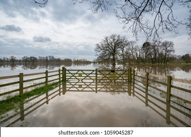 flooded park in the UK with trees partially submerged under water and nice reflections with stormy skies in background