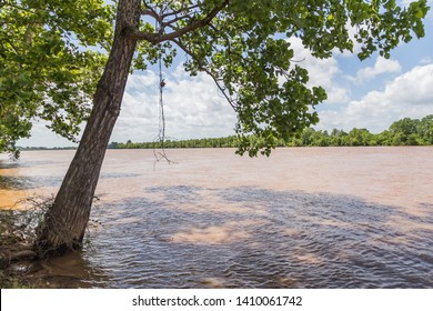 Flooded Red River in Shreveport and Bossier City Louisiana:  The Red River in Shreveport and Bossier City, Louisiana overflowing as a result of recent deluges across the United States.