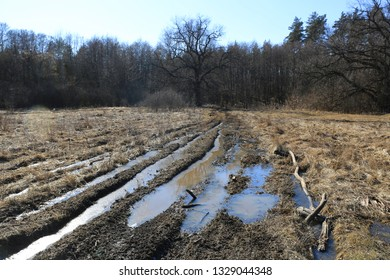 flooded root road on spring meadow