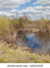 Flooded spring meadow after flooding near the Teterev River, Polesie