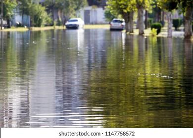 Flooded street in Poti town, Georgia.