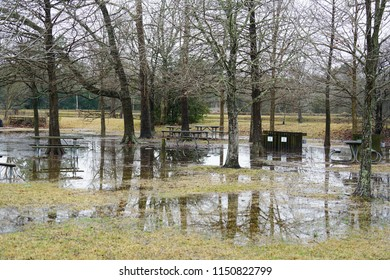 Flooded TerrestriAl Area
